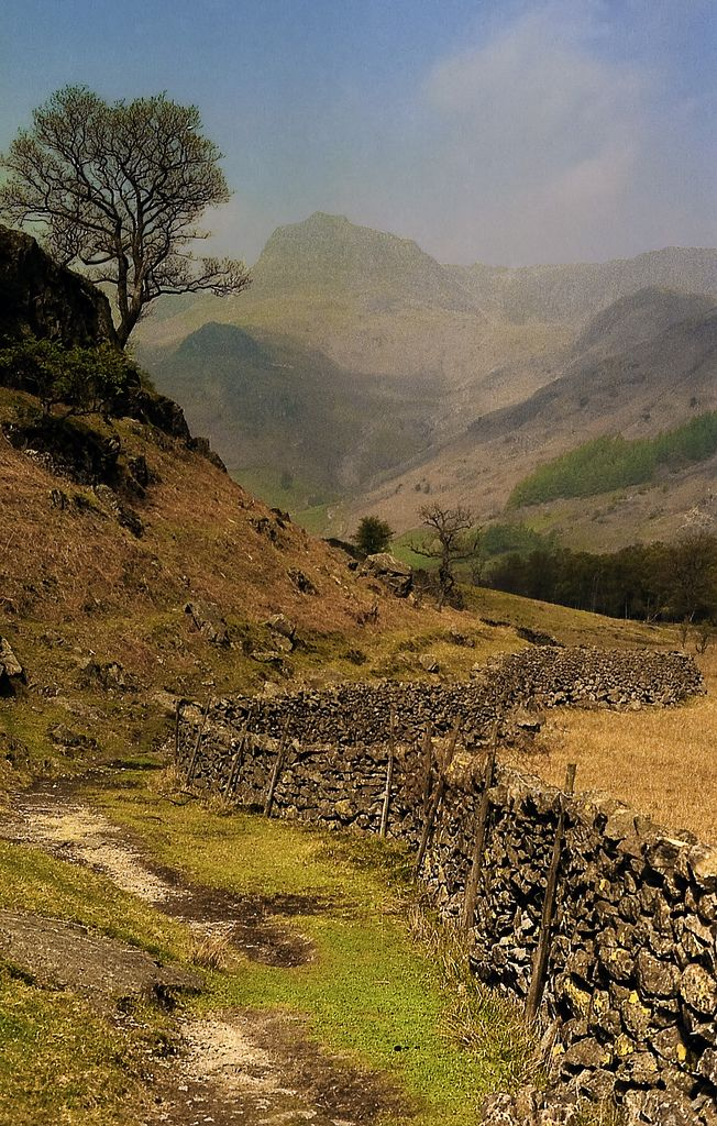 Lake District N 206 Langdale Pikes From The Cumbria Way Lake District England Lake District Scenic Lakes