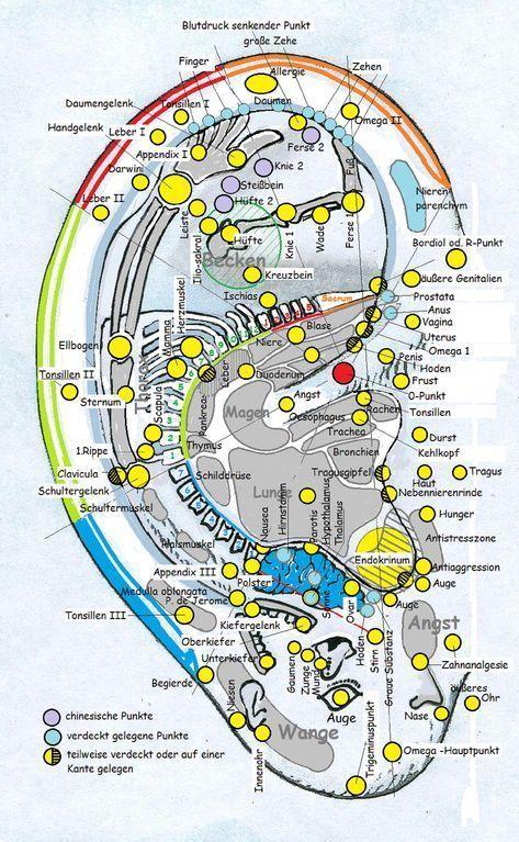 Ohrkarte Noack 4 - New Ideas,  #Fitness #gesundundfit #Gesundheit #IDEAS #Noack #Ohrkarte