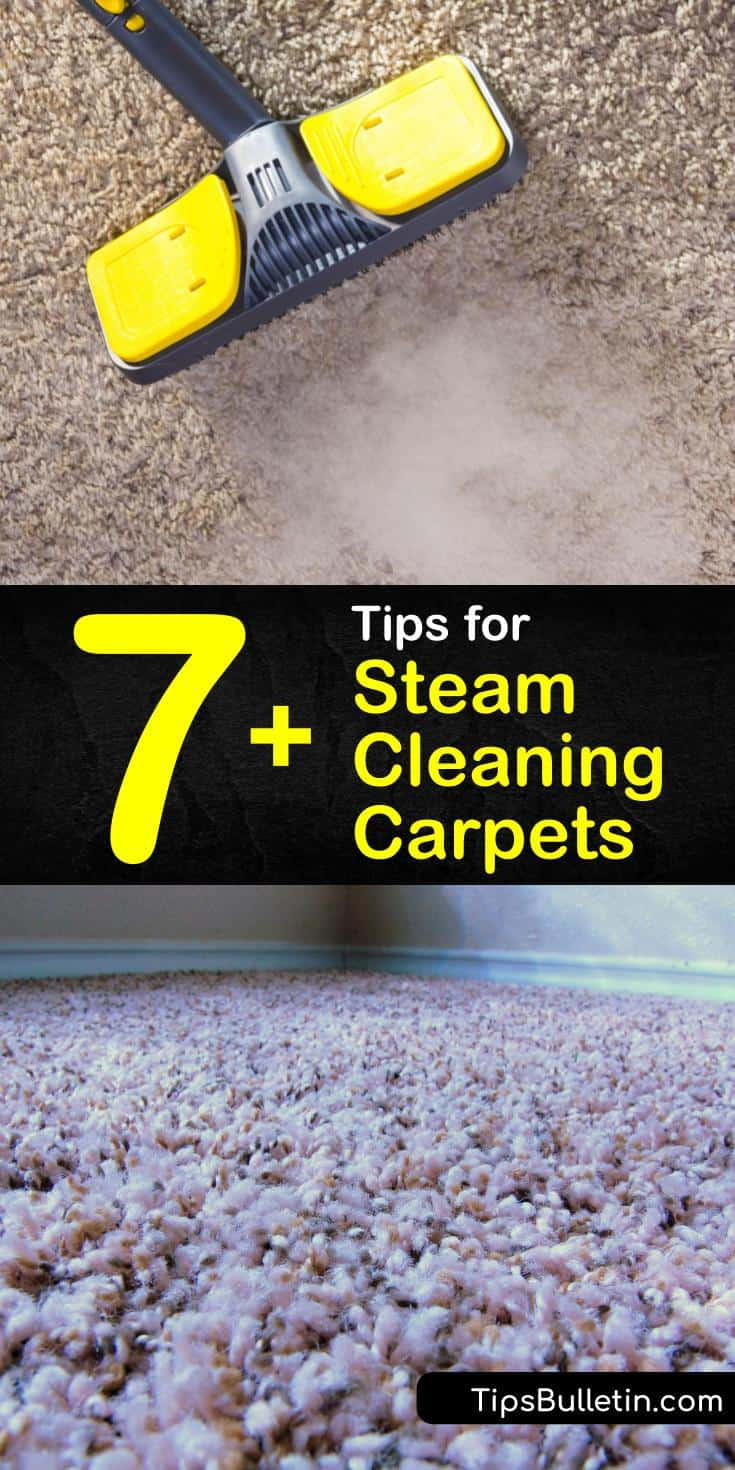 7+ Tips for Steam Cleaning Carpets | How to clean carpet ...