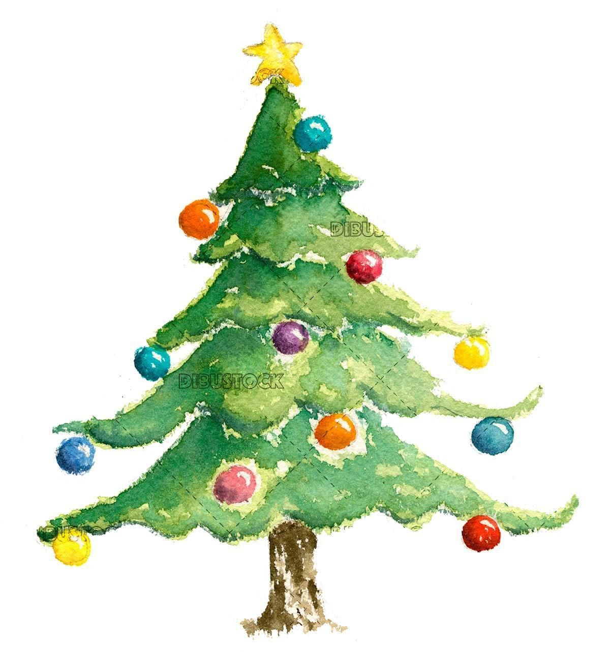 Christmas Tree In Watercolor Christmas Tree Drawing Christmas Art Christmas