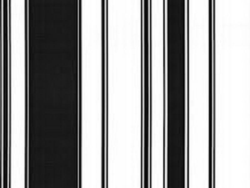 black and white stripe google search