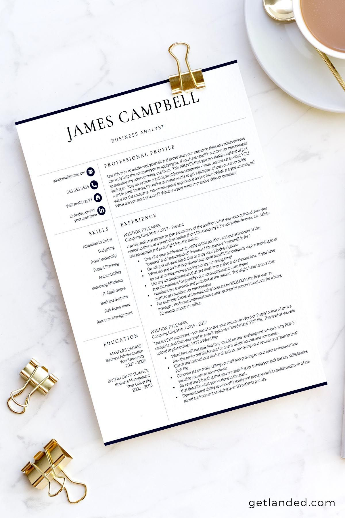 Executive Resume Template Professional CLevel Resume