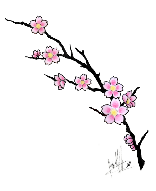 cherry blossom tattoos cherry blossom tattoo design by