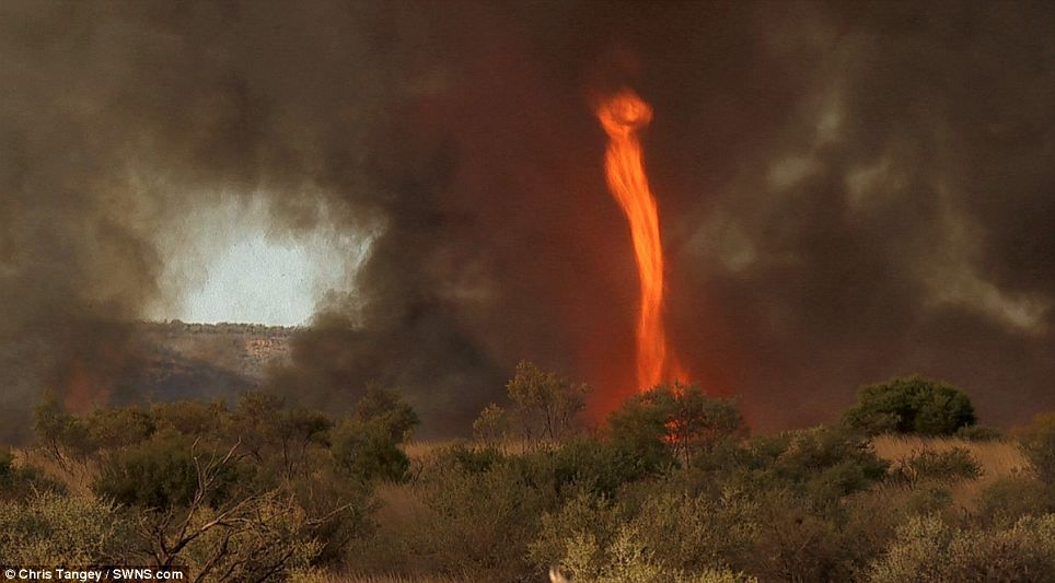 Caught on camera: The 30 metre high tornado of FIRE that whirled ...