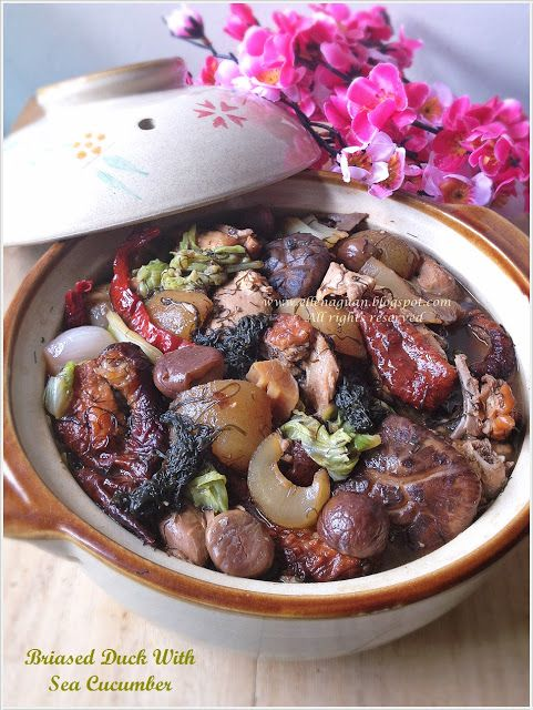 Braised duck with sea cucumber for chinese new year a singaporean food forumfinder Image collections