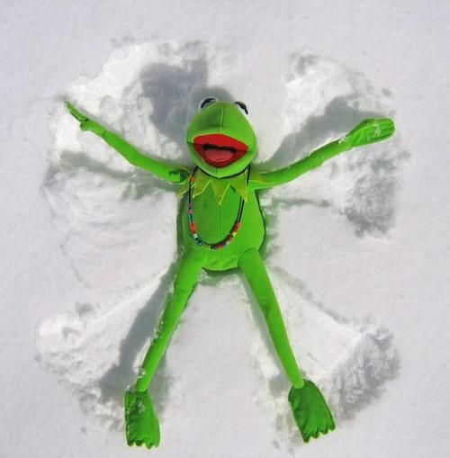 Muppet Christmas Meme: Shared Board - Cause To Pause