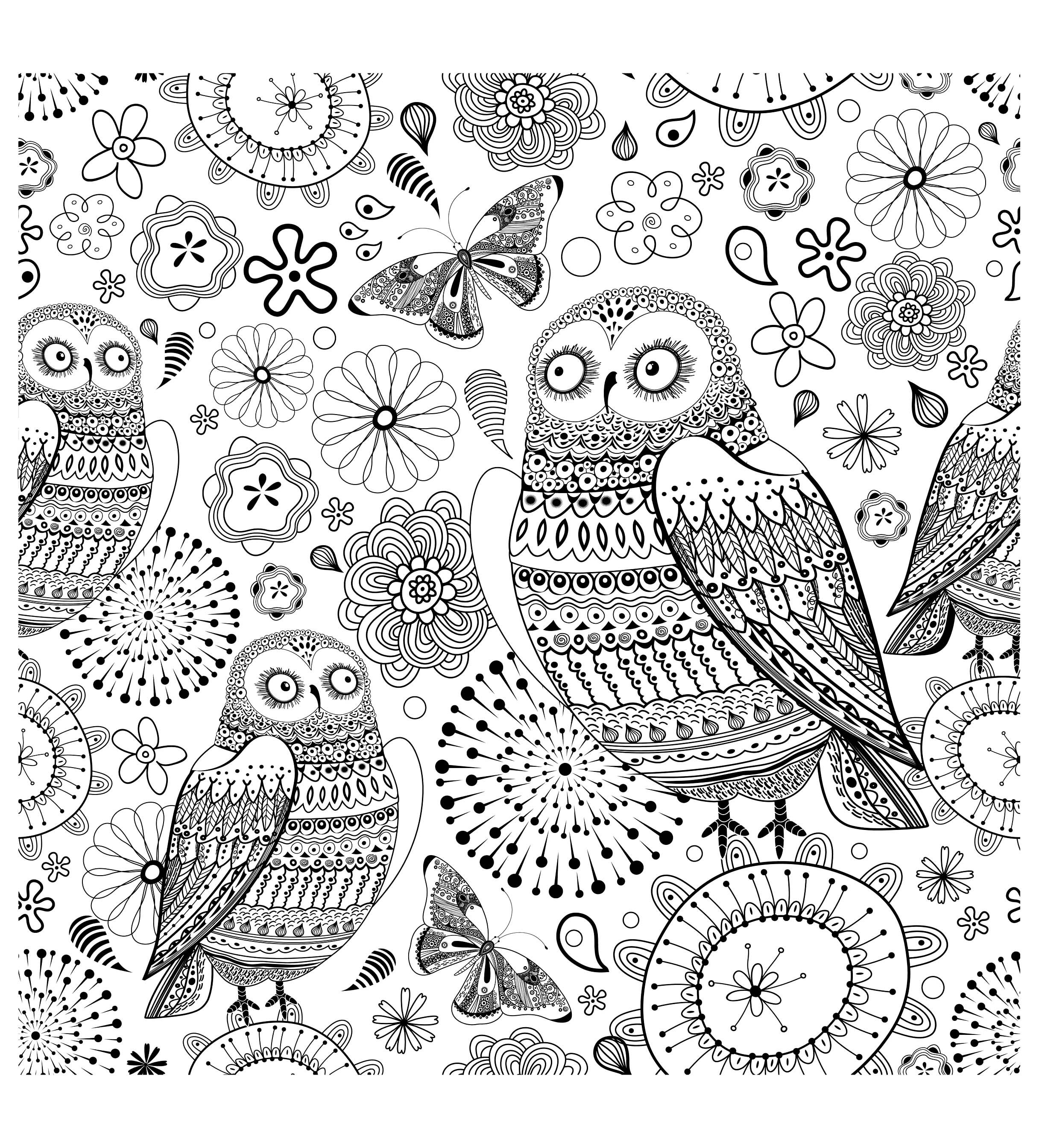 to print this free coloring page coloring difficult owls click