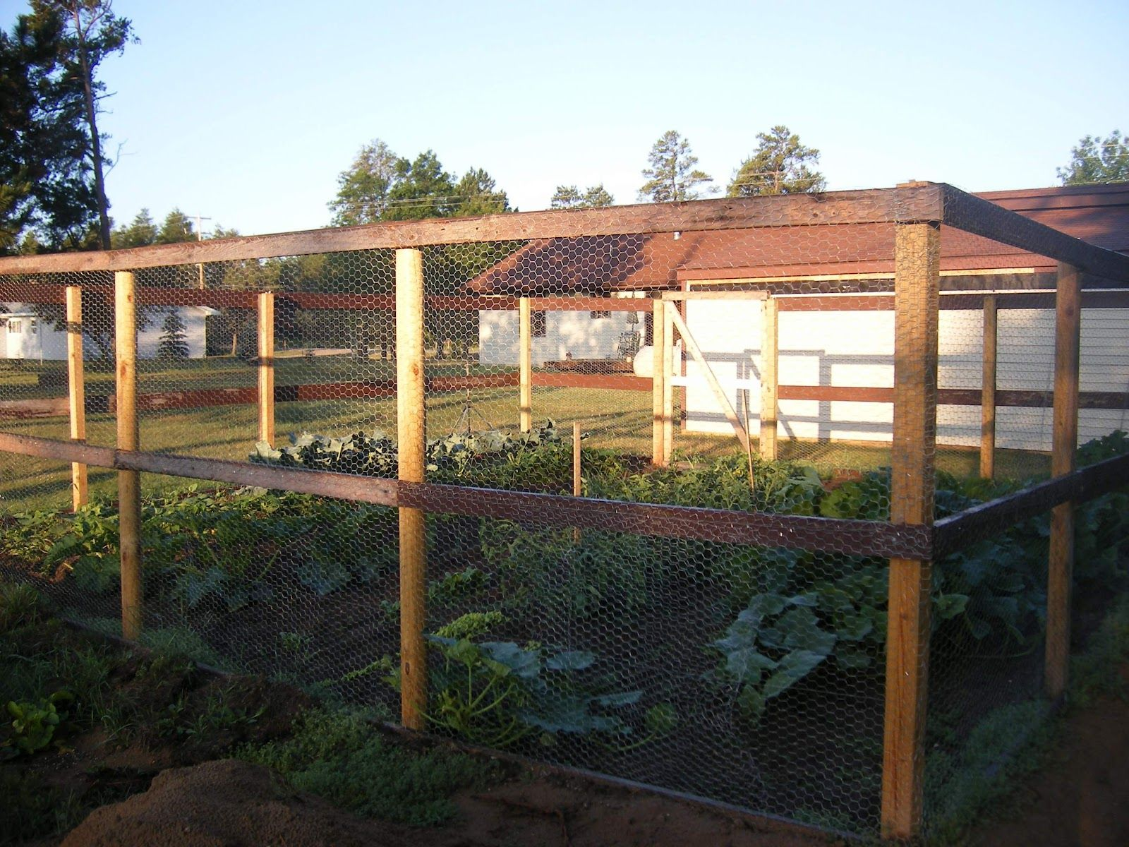 Raised Garden Fence Ideas To Keep Deer Out | ... Men And A Little