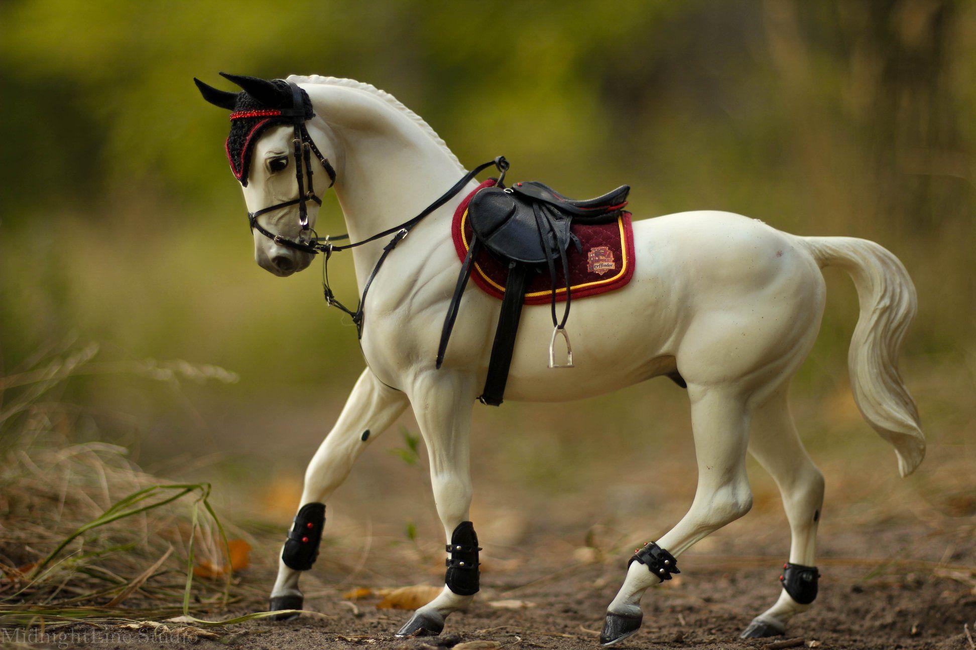 окончил картинки лошадей брейер на природе они применяются первую