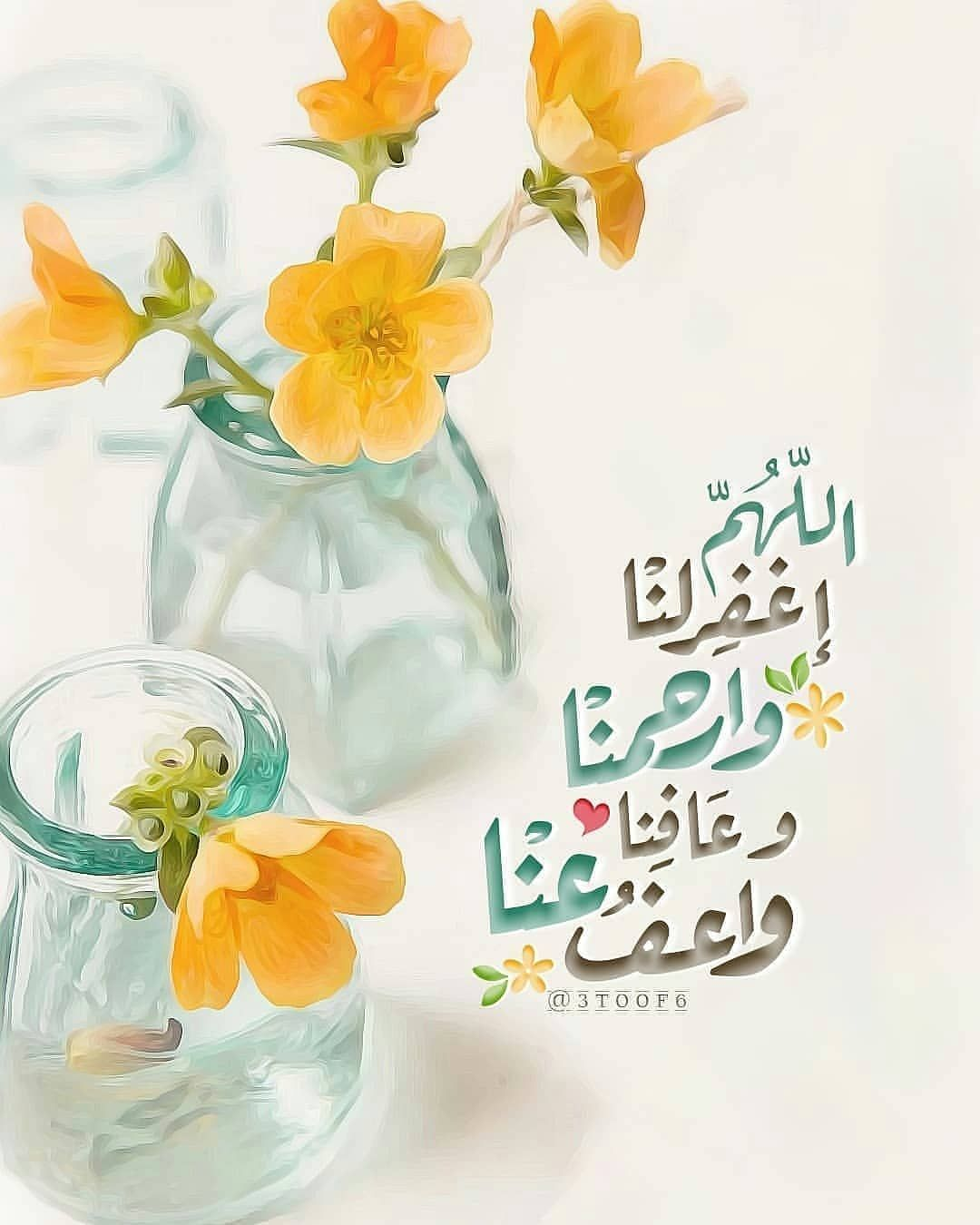 Image May Contain Flower And Plant Beautiful Morning Messages Islamic Love Quotes Islamic Messages