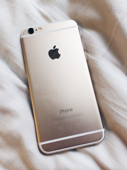 iphone 6 silver and gold case