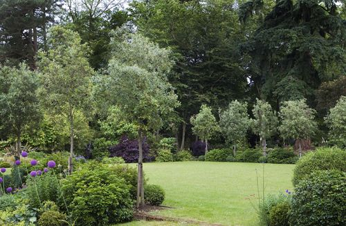 Country Garden In Surrey By Hampshire Based Garden Designer Delectable Garden Designers Hampshire Design