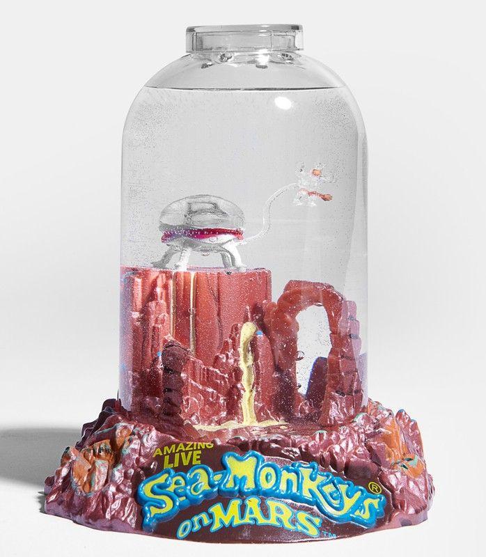 Sea Monkeys On Mars Sea Monkeys Gifts For Boys Sea