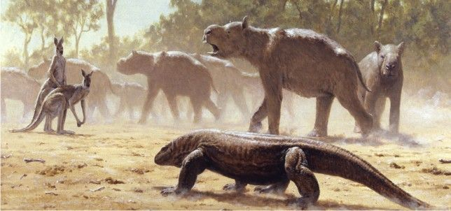 A herd of Diprotodon being stalked by the giant lizard, Megalania ...