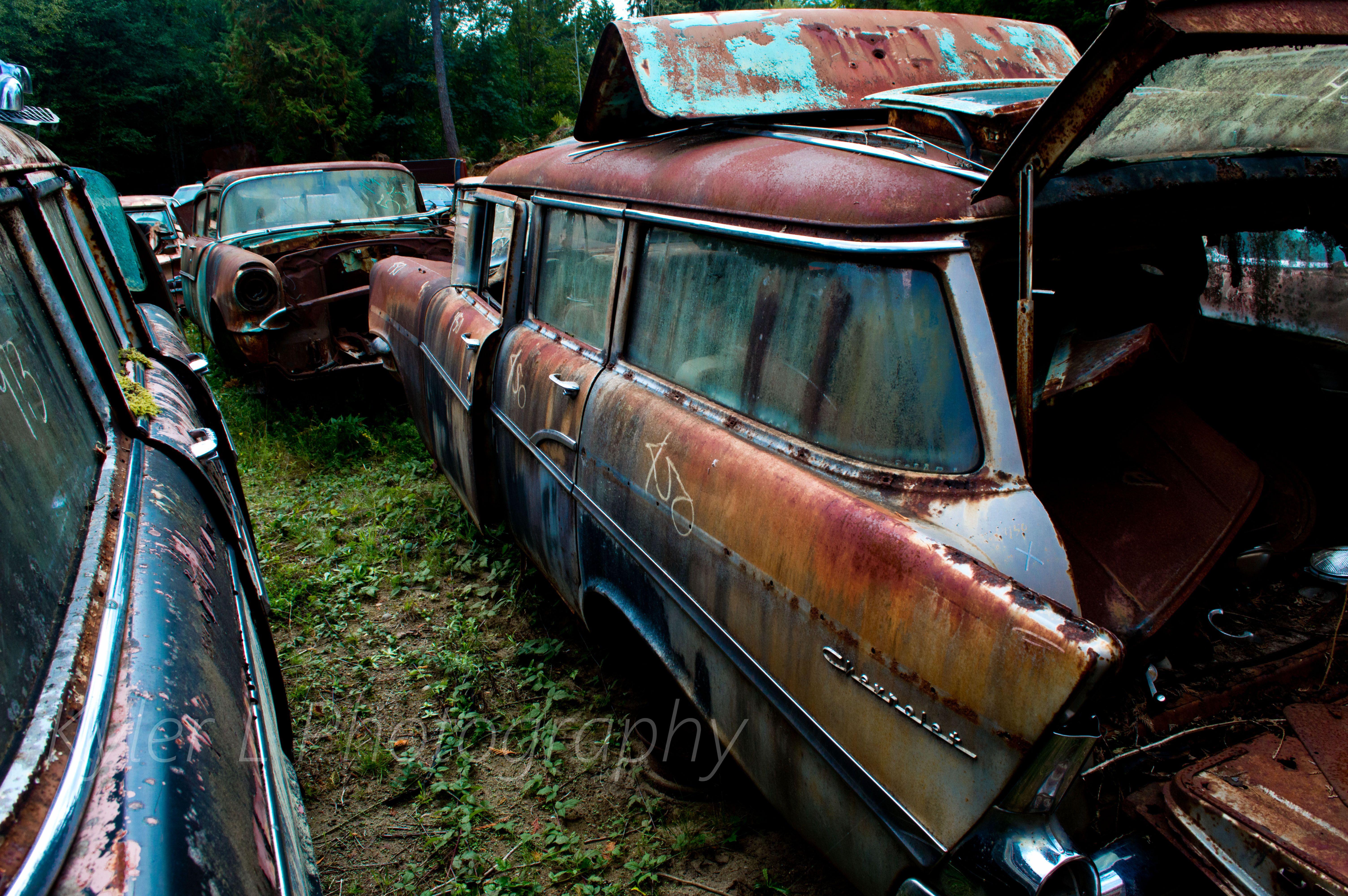 Old Cars At A Wrecking Yard In Northwest Washington Kyler L