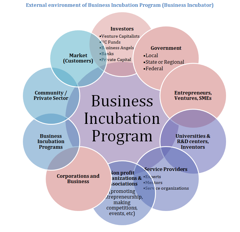 Business Incubator Organization Chart  Google Search  Business