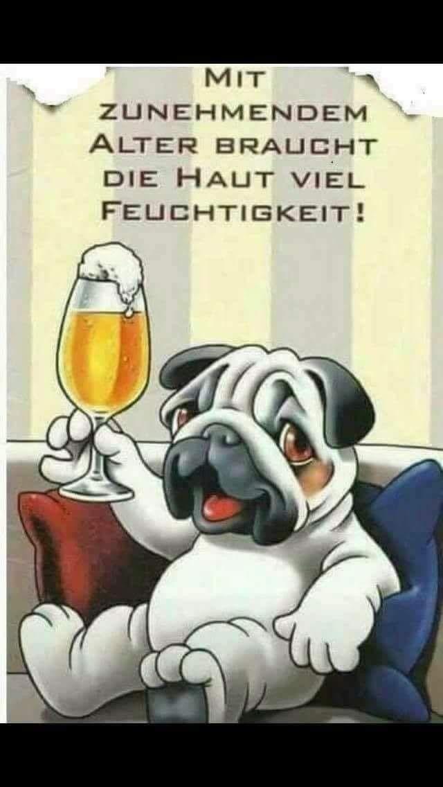 Bier lustig witzi  #lustige-bilder  #Bier #lustig #lustigebilder #witzi