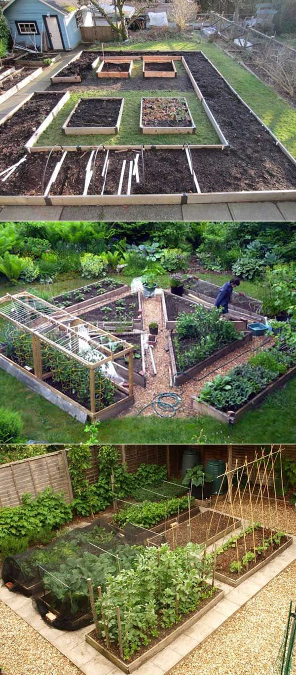 Backyard Vegetable Garden Design These vegetable garden designs require a little more space. Their layout  allows you to grow different foods in different areas, and their path let  you easy ...