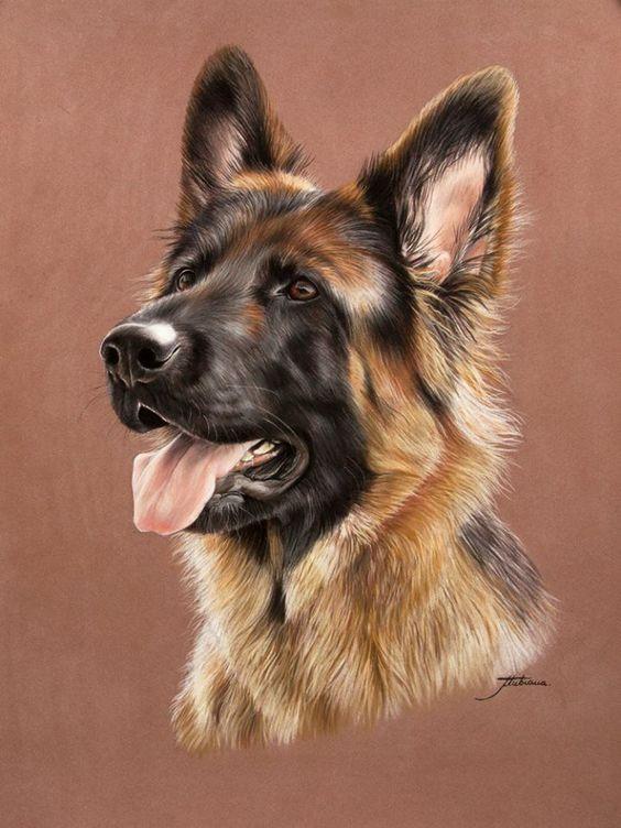 Artist Marion Tubiana Hunde Gemalde Tiergemalde Hundekunst