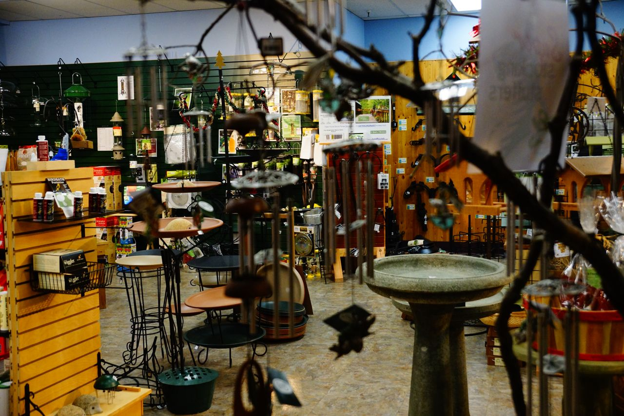 Interior Of The Wild Birds Unlimited Retail Boutique At 2720 S Wadsworth Blvd At Yale Phone 303 987 1065 For Hours And Wild Birds Unlimited Wild Birds Birds