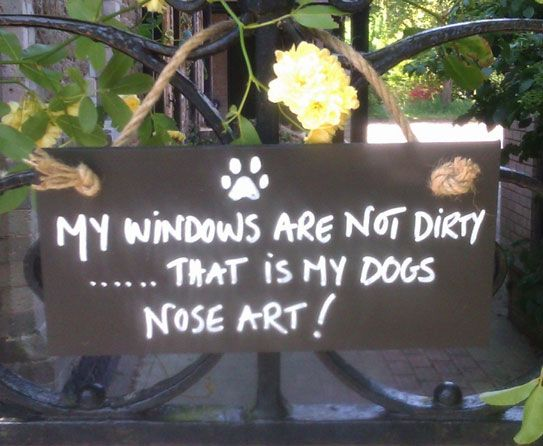 Woof And Grin On Humorous Dog Door Signs Sayings Pinterest