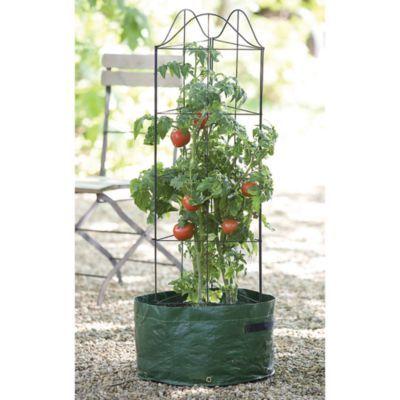 Gardman Climbing Tomato Planter Bedbathandbeyond Com 400 x 300
