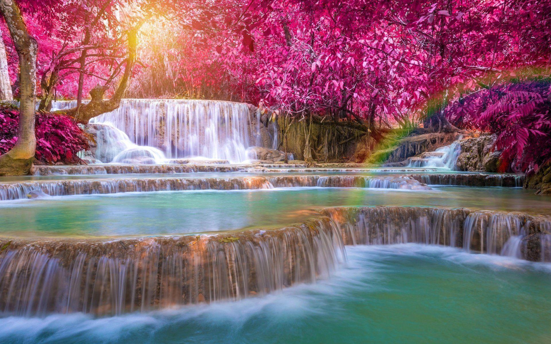 Earth Waterfall Nature Rainbow Tree Foliage Wallpaper Natural Pool Waterfall Waterfall Wallpaper