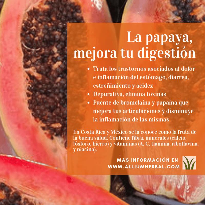 La Papaya Carica Papaya Es Una Fruta De Origen Tropical Grande