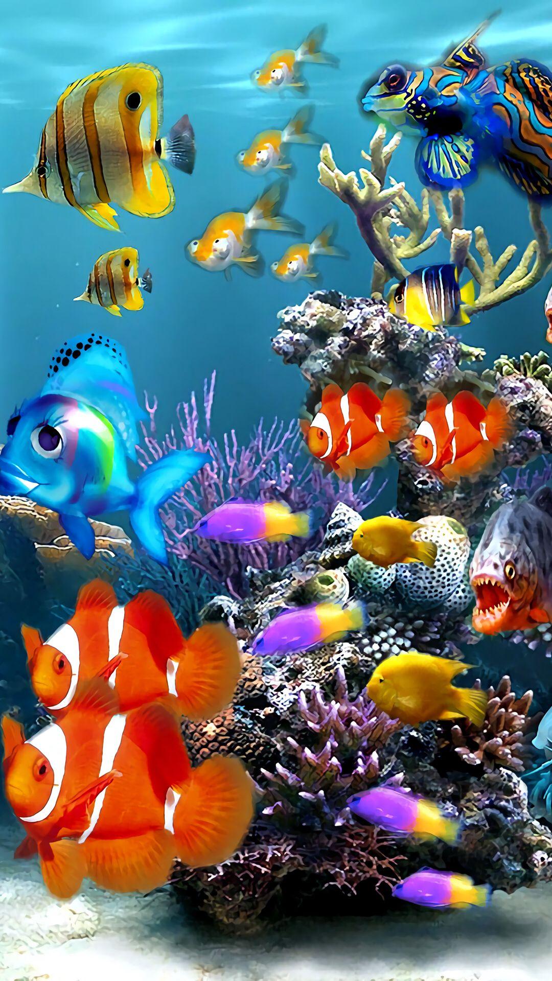 3d Aquarium | Pescados | Fish wallpaper iphone, Fish ...
