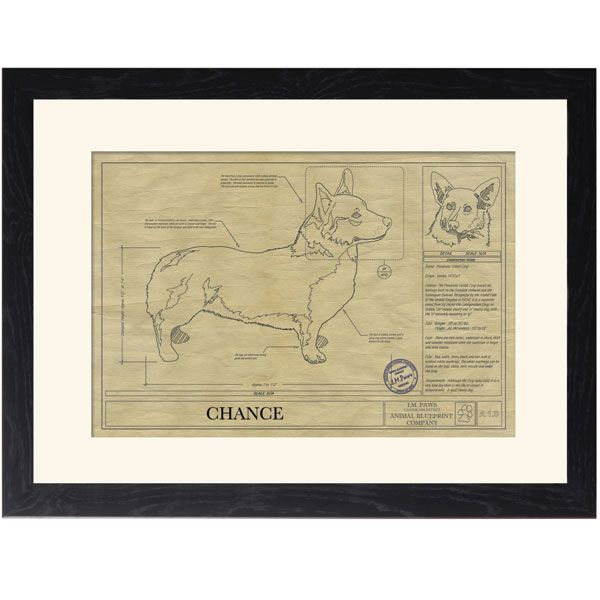 Personalized Framed Dog Breed Prints