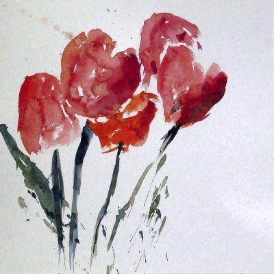 aquarell rot blüten