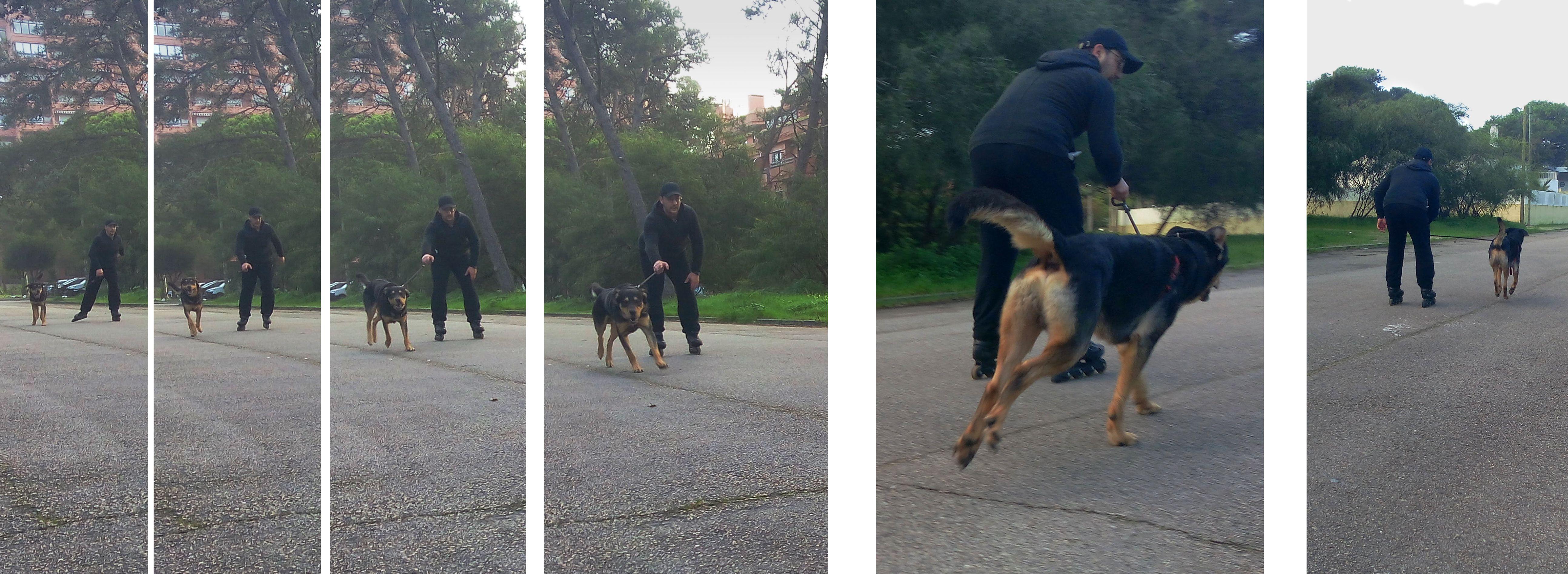 Passeio Radical em patins o Zurga ficou para trás 😂
