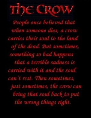 Image result for Crow sayings