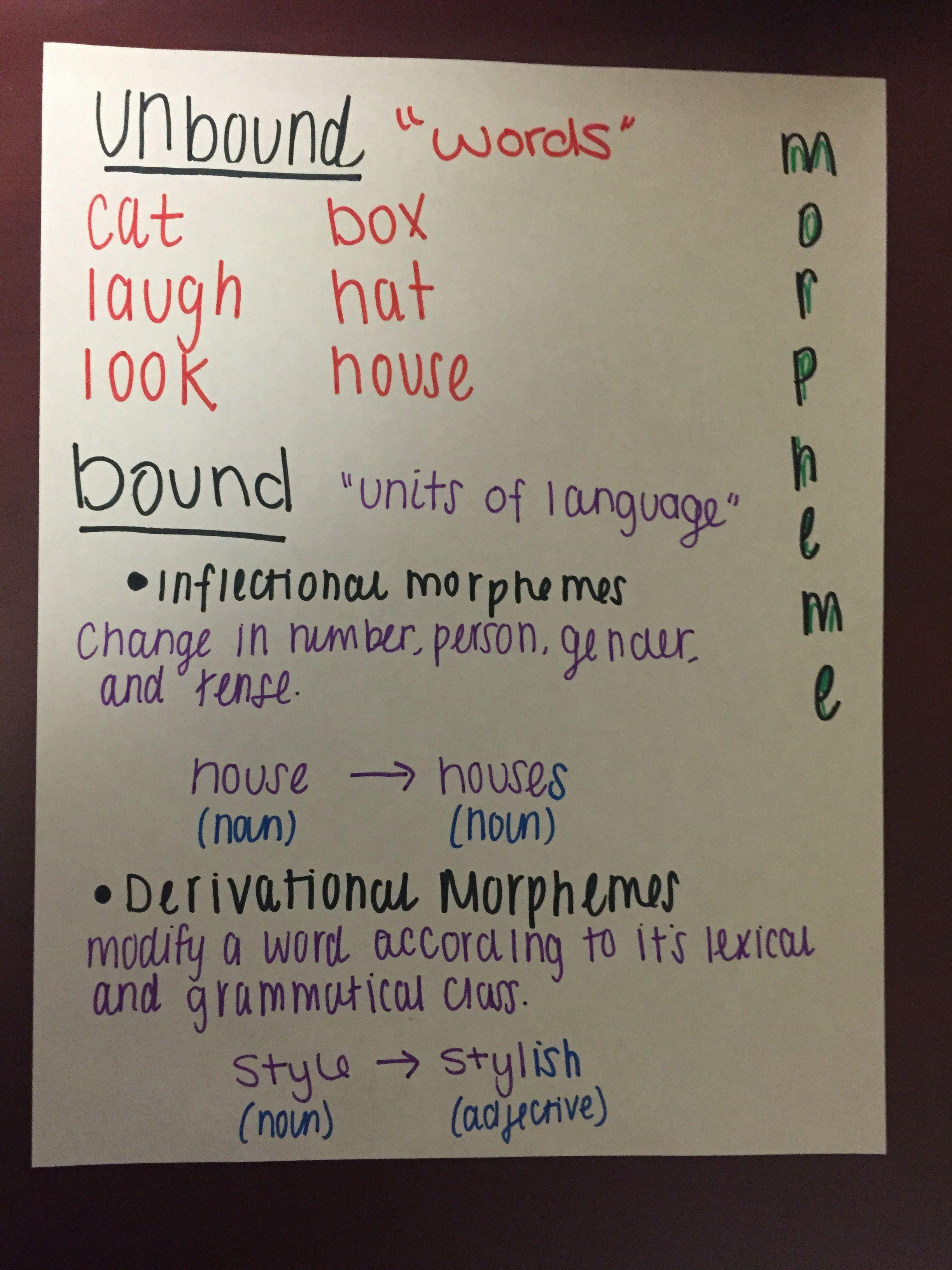 Morphology: bound and unbound morphemes  Unbound- words Bound- units