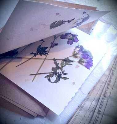 using a microwave oven                   on Wednesday I showed you how to press flowers the traditional way , but if you are impatient     is part of Pressed flower art -