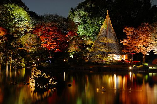 Must see Wallpaper Night Japanese Garden - 85bc2db39286757ce797e01f507b4ed5  Collection-100979.jpg