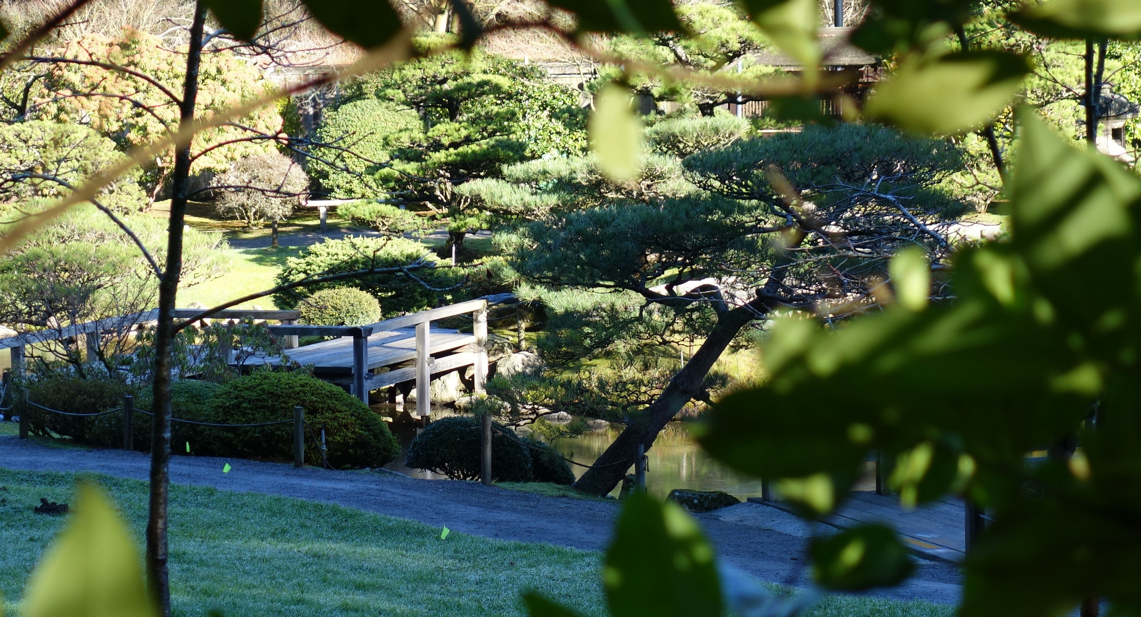 seattle japanese garden from the outside when it is closed in