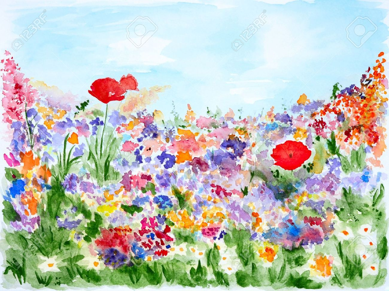 summer flowers in garden watercolor hand painted stock photo - Flower Garden Paintings