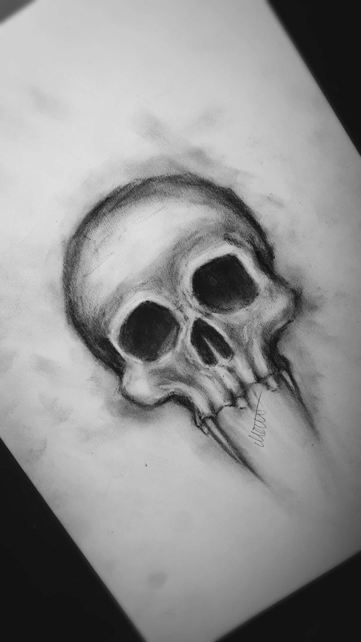 Realistic Abnormal Skull Drawing In Charcoal Skull Drawing Scary Drawings Realistic Drawings