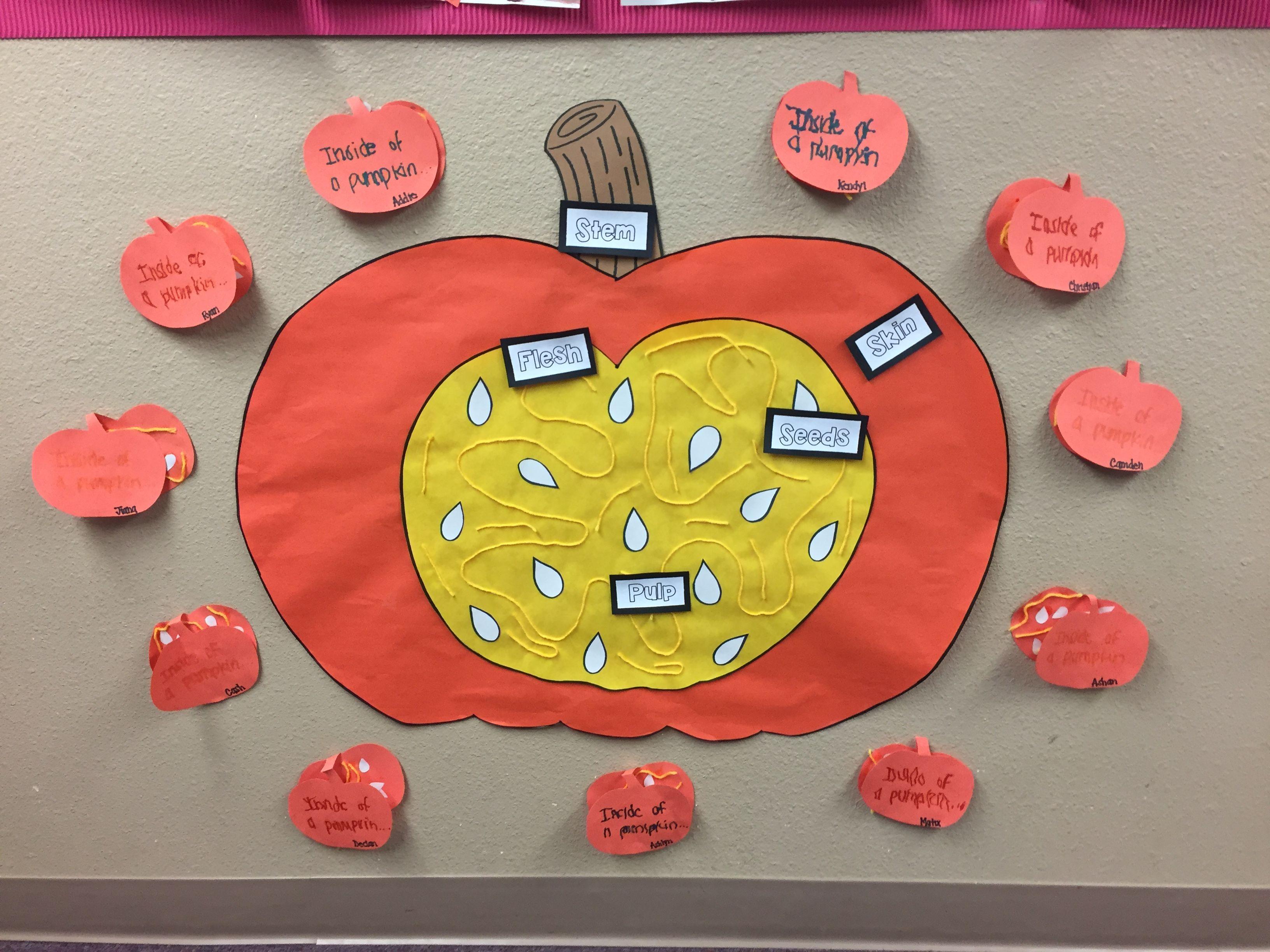 Inside Of A Pumpkin Amp Labeling A Pumpkin