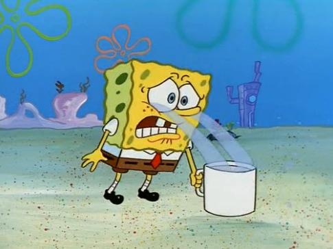 From Spongebob Funny Cartoon Memes Spongebob Memes