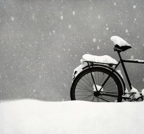 No time for a bike to be out of doors.