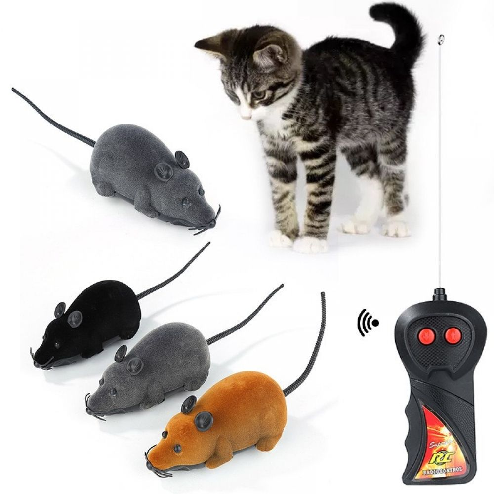 Cat Toy Wireless Remote Control Mouse Price 7.99 & FREE