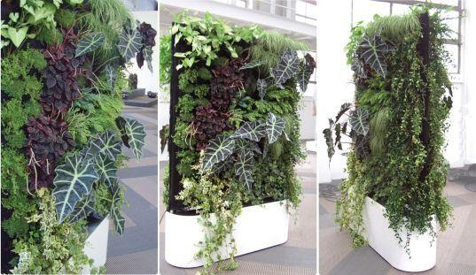 Modular Self Watering Living Walls. Enjoy Some Keywords: Sustainable  Design, Green Design