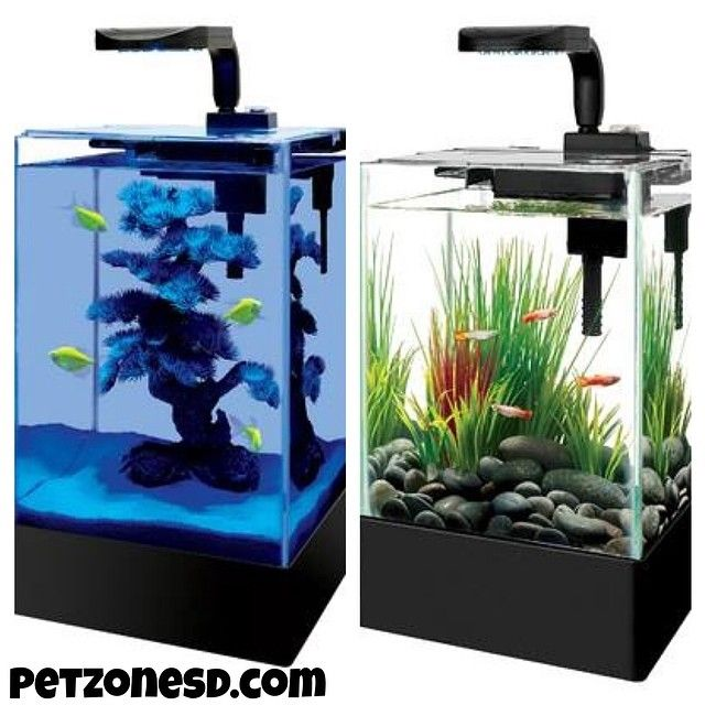 Desktop Aquarium Nano Tanks With Daytime Nighttime Led Lighting For Your Office Or
