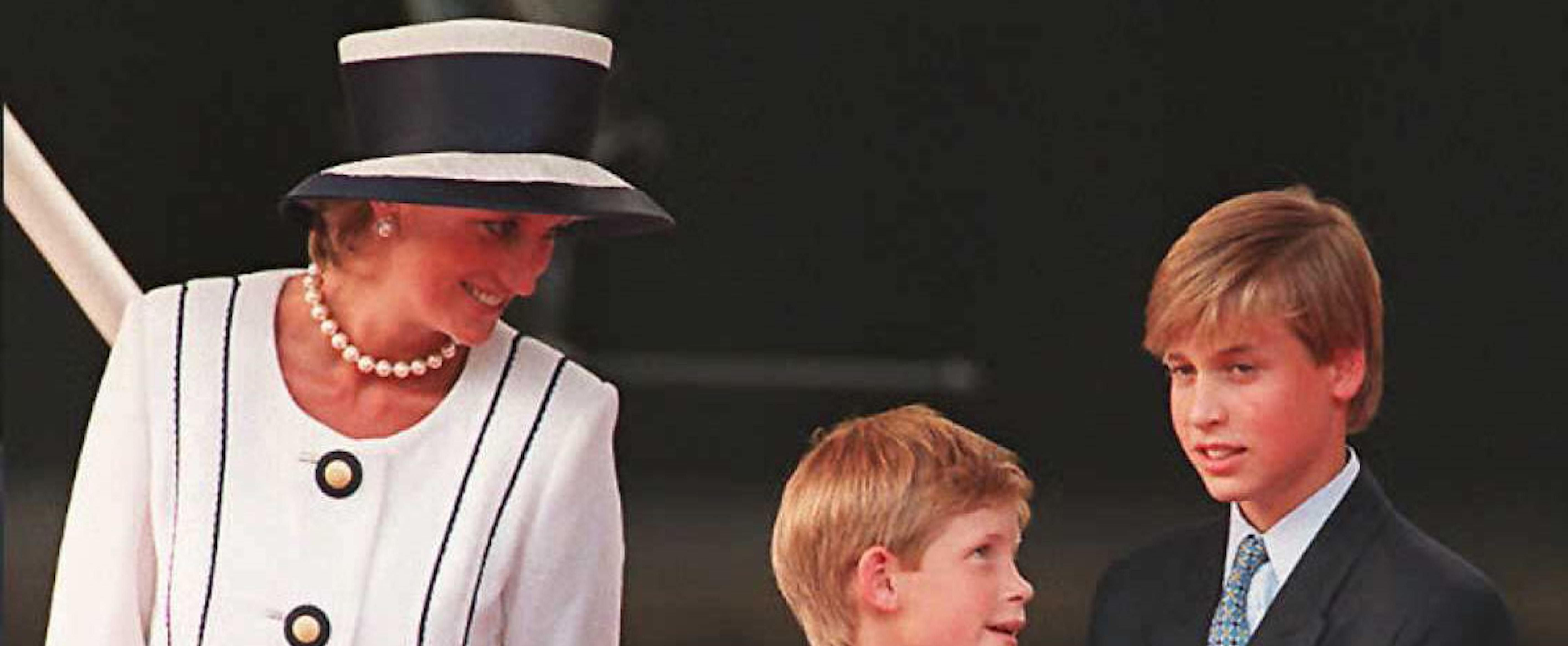 William and Harry's Young Ages When Diana Died Are Still