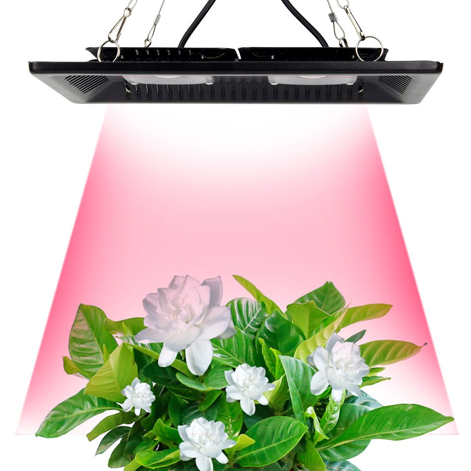 Waterproof Ip67 Cob Led Grow Light Full Spectrum 100w 200w Ultra Thin Led Growing Lamp For Vegetables Bloom Indoor Outdoor Plant Led Grow Lights Grow Lights Plant Lighting