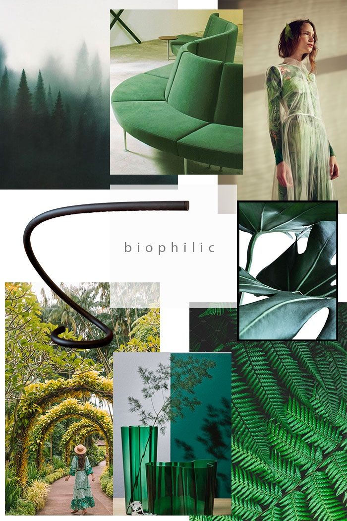 interior design nglp designs shares interior design on 2021 color trends for interiors id=26465
