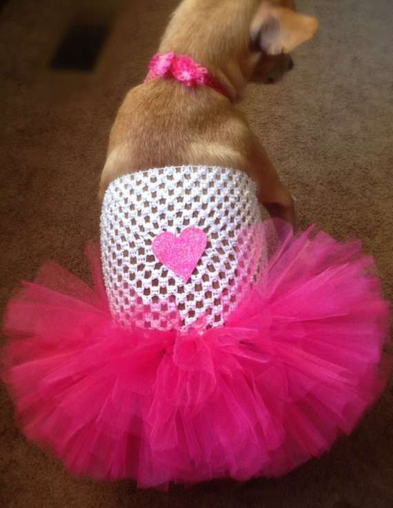 Valentines Dog Dress Valentines Day Pink And White Dog Tutu Dog