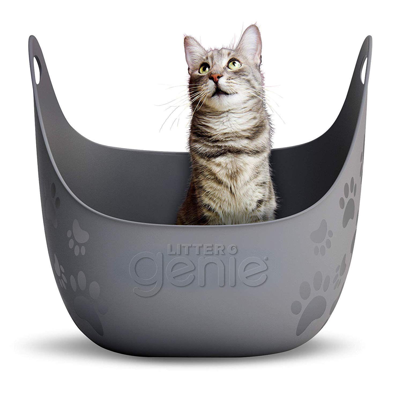 Litter Genie Litter Box With Handles Review Best cat